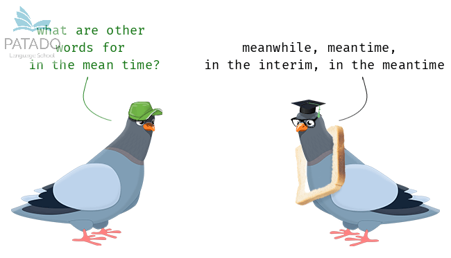 Ngữ pháp tiếng Anh - While, Meanwhile, Meantime - Patado